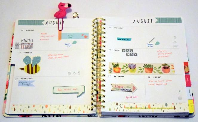 my week 36(2)