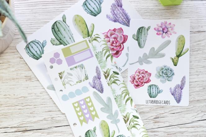 succulent planner stickers